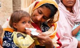 国連WFPイメージ2
